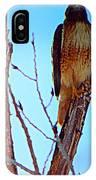 Regal Raptor IIi IPhone Case