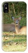 Relaxing In The Sun And Shade IPhone Case