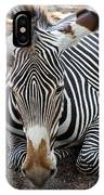 Relaxing Zebra IPhone Case