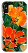 Rembrant's Garden IPhone Case