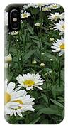 Requested Daisies IPhone Case