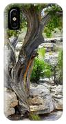Resilient Tree IPhone Case