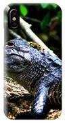 Resting Alligator  IPhone X Case