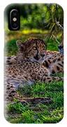 Resting Cheetahs IPhone Case