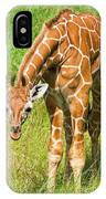 Reticulated Giraffe 6 Week Old Calf IPhone Case