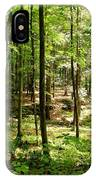 Wooded Path 13 IPhone Case