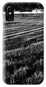 Rice Paddies IPhone Case