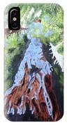 Rim Fire Yosemite  IPhone Case
