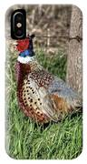 Ringneck By A Fence Post IPhone Case