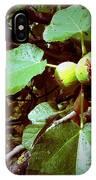 Ripe Figs IPhone Case