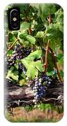 Ripening Grapes IPhone Case