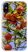 Ripening In The Sun IPhone Case