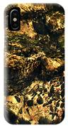 River Rock Reflections IPhone Case