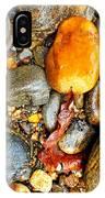 River Rocks 8 IPhone Case