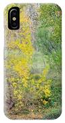 Riverbank Colors IPhone Case