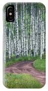Road Through A Birch Tree Grove IPhone Case