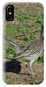 Roadrunner Male With Food IPhone Case