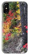 Roadside Fall Colors IPhone Case
