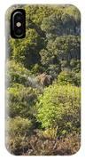 Roadside Forest Scenery IPhone Case