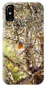Robin Perched On Olive Tree IPhone X Case