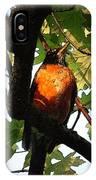 Robin Waiting IPhone Case