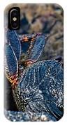 Rock Crab At He'eia Kea Pier IPhone Case