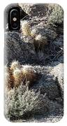 Rocks And Cactus IPhone Case