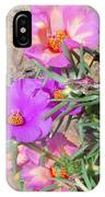 Rocks And Roses IPhone Case