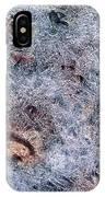 Rocks In Ice IPhone Case