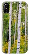 Rocky Mountain Aspen Forest IPhone Case
