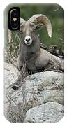 Rocky Mountain Big Horn IPhone Case