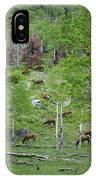 Rocky Mountain Elk Herd IPhone Case