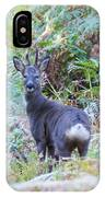 Roe Buck In Woodland IPhone X Case