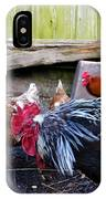 Rooster And Chickens IPhone Case