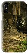 Rooster In The Hen House IPhone Case