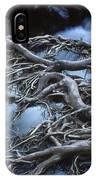 Roots Over Ozark Stream IPhone Case