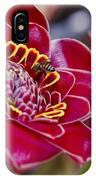 Rose De Porcelaine IPhone Case