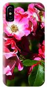 Rose Garden 4 IPhone Case