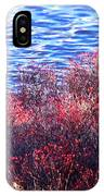 Rose Hips By The Seashore IPhone Case