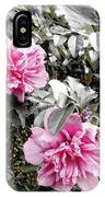 Rose Of Sharon-vintage Warmth IPhone X Case