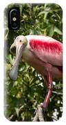 Roseate Spoonbill  What Are You Looking At 2 IPhone Case