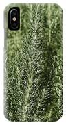 Rosemary Forest IPhone Case