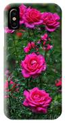Roses In The Garden IPhone Case
