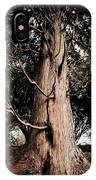 Roukenglentree IPhone Case