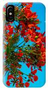 Royal Pioncianna 11 IPhone Case