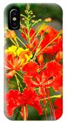 Royal Poinciana IPhone Case