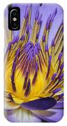 Royal Purple Water Lily #5 IPhone Case