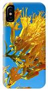 Rubber Rabbitbrush Off Hole-in-the-rock Road In Grand Staircase Escalante National Monument-utah IPhone Case