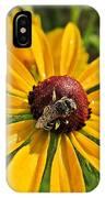 Rudbeckia Bee IPhone Case
