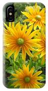 Rudbeckias With Green Centers IPhone Case